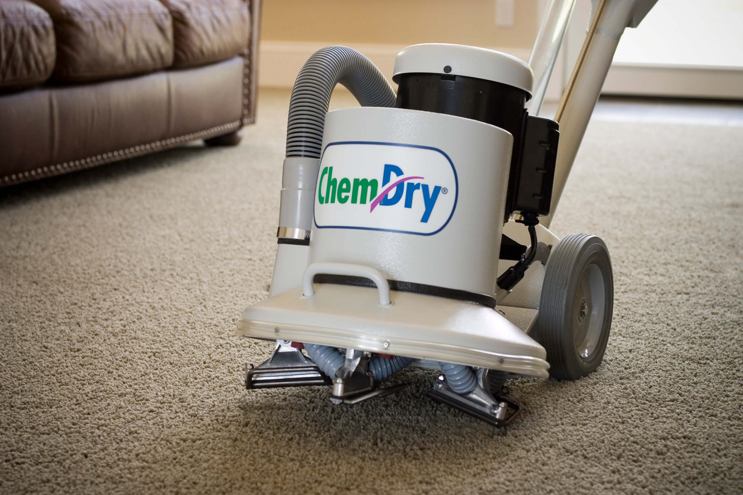 carpet cleaning in annapolis md