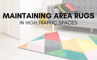 Maintaining Area Rugs in High Traffic Spaces