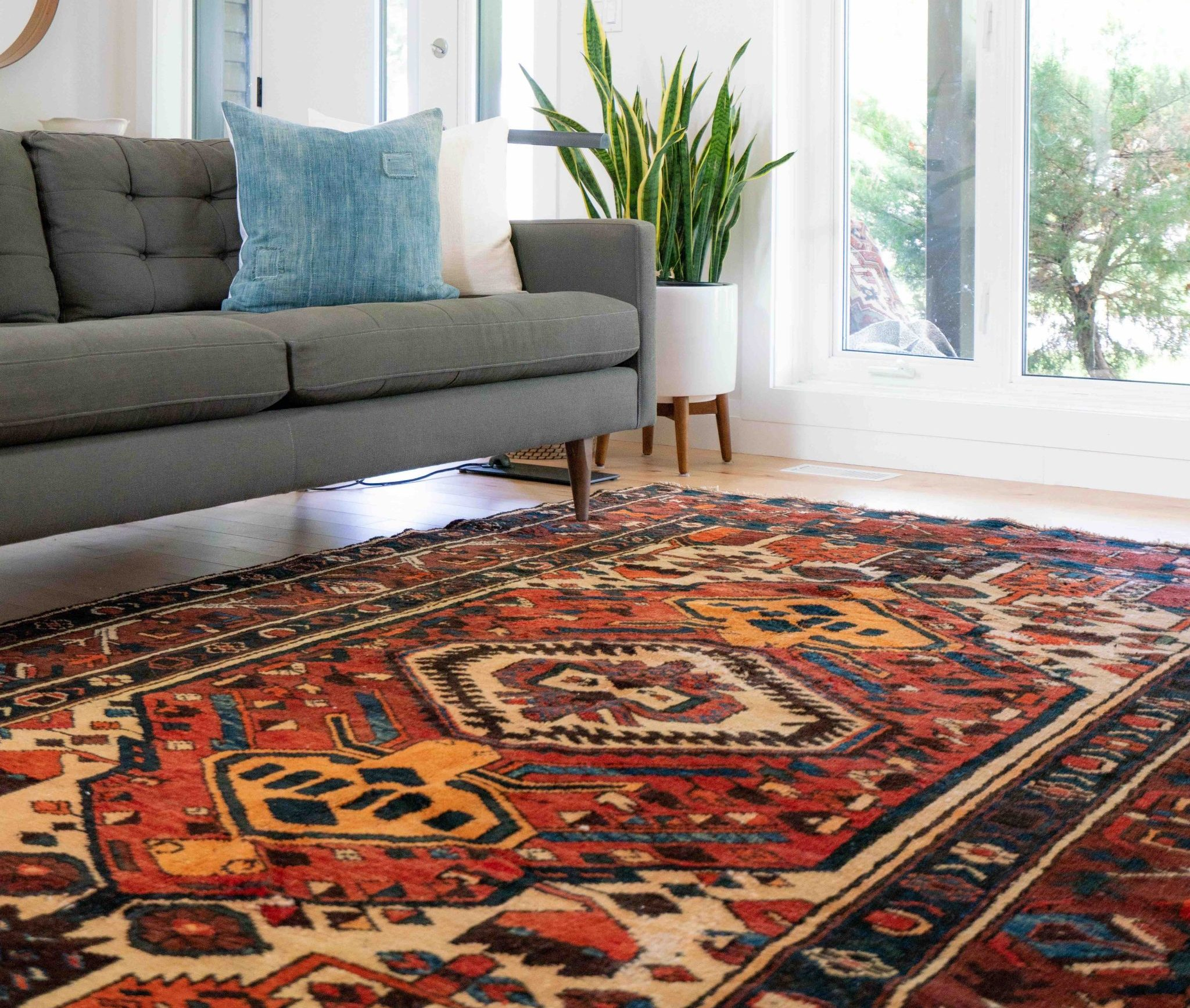 area rug cleaning in Annapolis