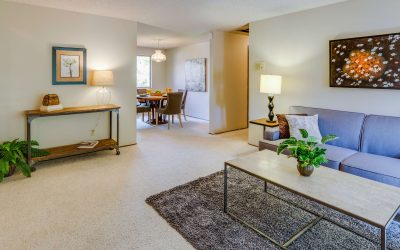Shield Your Carpets with Chem-Dry Carpet Protectant